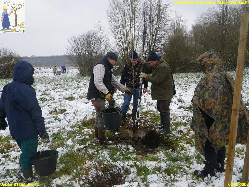Hautefeuille Plantation 18.03.2018 (10)